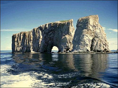 Фото восточносибирской лайки